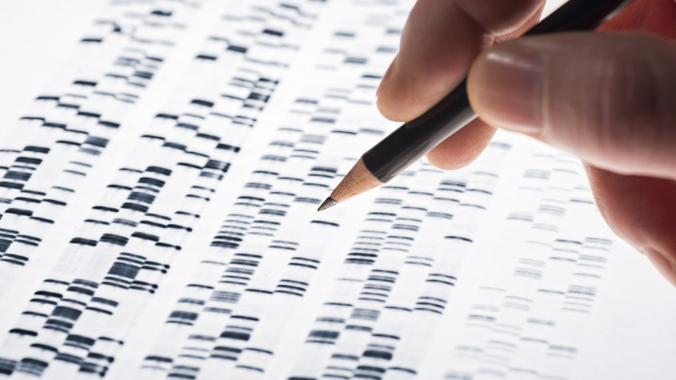 Over-the-counter genetic tests focus of genealogy talk